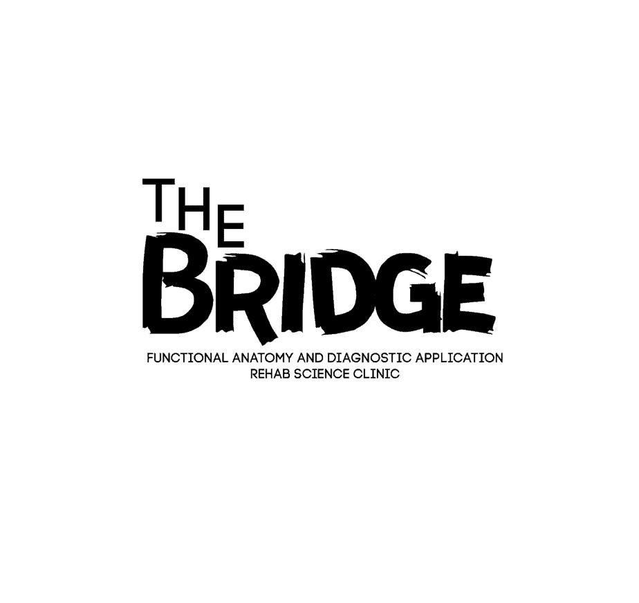 THE BRIDGE OT SUMMER CAMP (2)