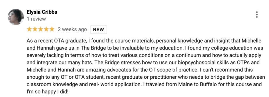 Reviews for The Bridge